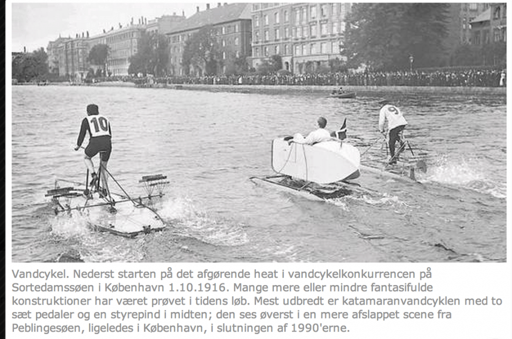 denstoredanske.dk