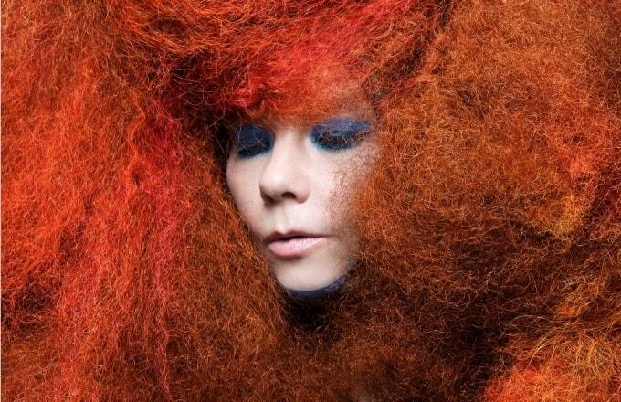 Björk Musikfilm Festival