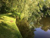 Green spot: Frederiksberg Gardens
