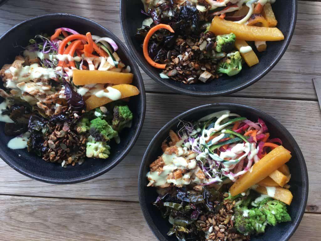 Økologisk mad fra Gló