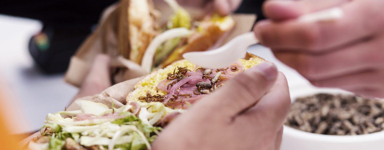 Det vidste du ikke om maden på Roskilde Festival 2018