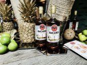 Opskrifter på sommer cocktails