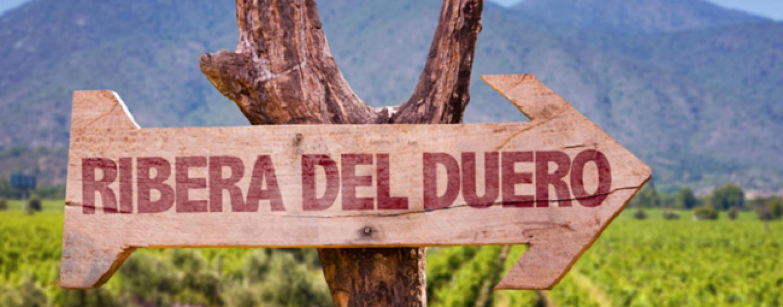 Spansk Vinfestival i Politikens Hus