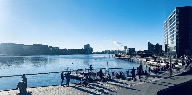 Guide: Her kan du vinterbade i København