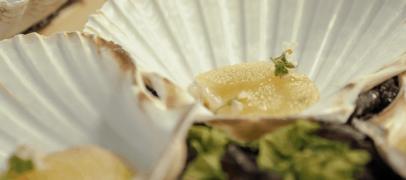 Fransk-indokinesisk restaurant Kampot åbner i Nordhavn