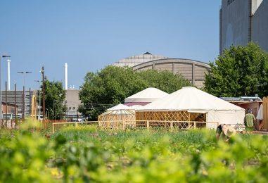 Øens Have – nyt grønt bylandbrug og restaurant